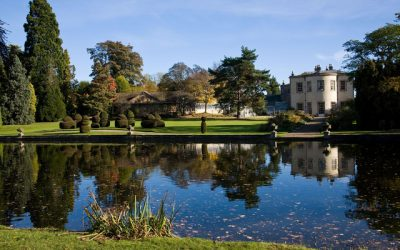 Thorp Perrow Arboretum – Falcons and Mammals